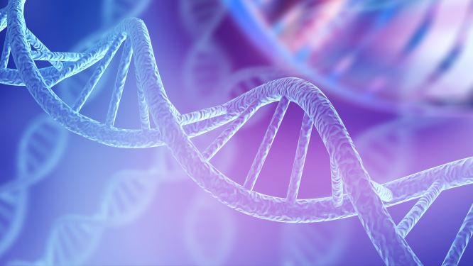 DNA二重らせんのイメージ図